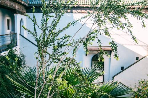Здание риада