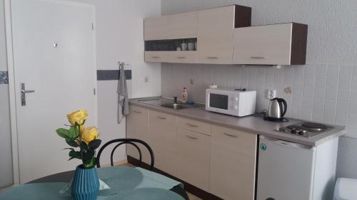 Kuchyň nebo kuchyňský kout v ubytování Apartments u Zlaté Koruny