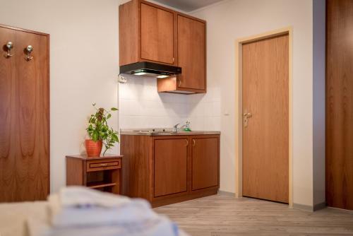 Küche/Küchenzeile in der Unterkunft Aparthaus