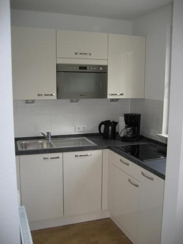 Kuchyň nebo kuchyňský kout v ubytování Hochwertiges Apartment im Grünen, zentral gelegen, ruhig, Balkon