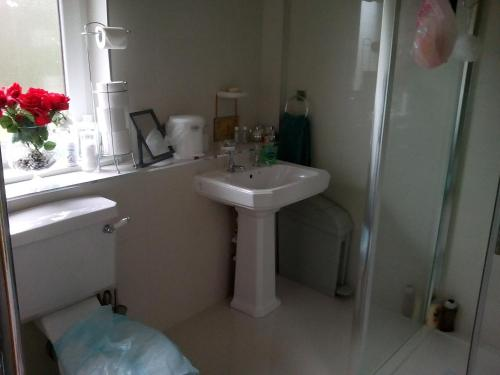 A bathroom at Strathaven Luxury Apartments