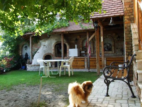 Pet or pets staying with guests at Nádfedeles Apartmanház