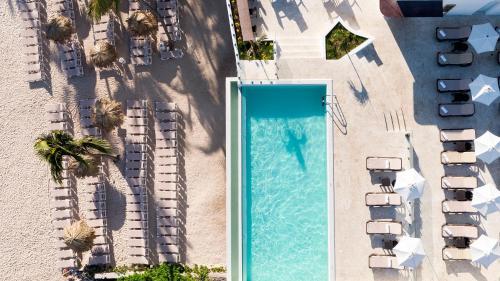 Vue sur la piscine de l'établissement whala!bávaro - All Inclusive ou sur une piscine à proximité