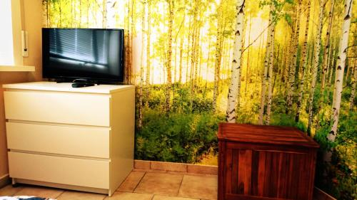 A television and/or entertainment center at City Apartment East Side