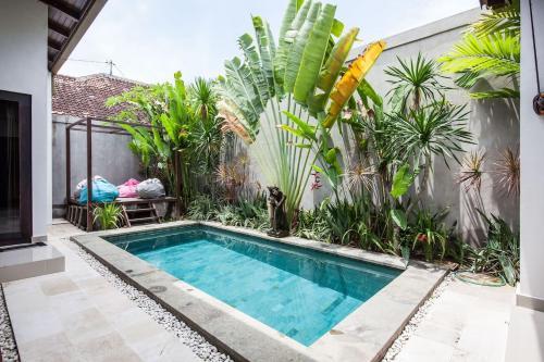 The swimming pool at or close to Apart Villa Sunbird