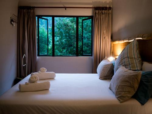 A bed or beds in a room at Africa's Eden Guesthouse