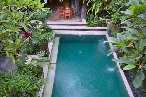 A view of the pool at Mawa House or nearby