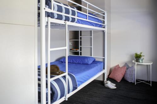 A bunk bed or bunk beds in a room at Spinners Hostel