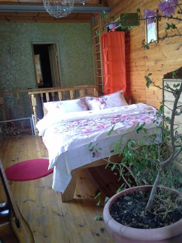 A bed or beds in a room at Луч Света