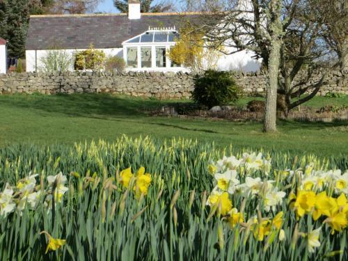 A garden outside Number 1 Kildale