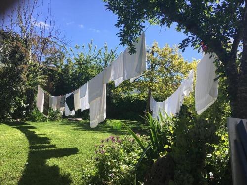 A garden outside Posada del Castaño