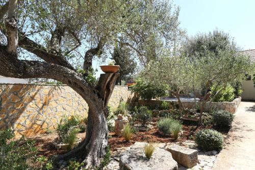 A garden outside PERE
