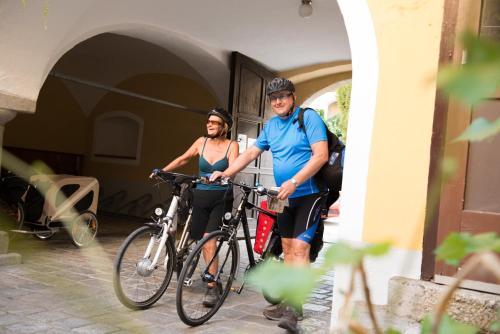 Radfahren an der Unterkunft Hotel-Garni Goldenes Kreuz oder in der Nähe