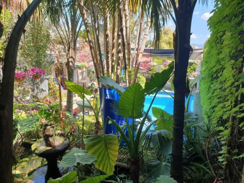 Vista de la piscina de The Green House - Adults Only o alrededores