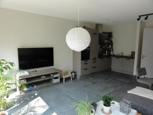 A television and/or entertainment center at Appartement boerderij met paarden