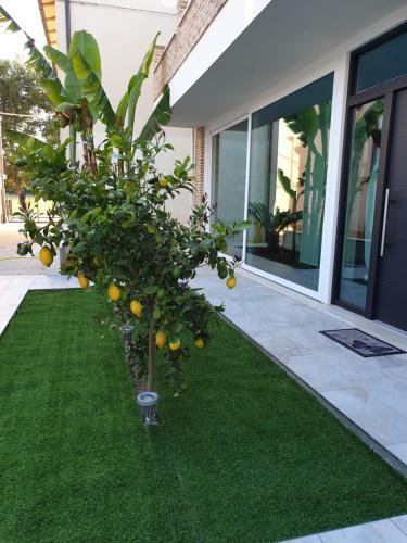 Giardino di la casa dei limoni