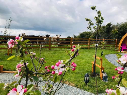 Children's play area at Clonakilty Accommodation An Úllórd Getways