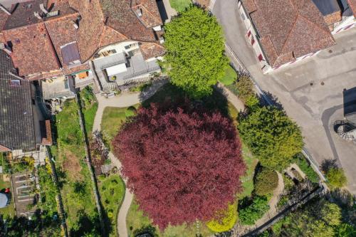 A bird's-eye view of Magnifique maison vigneronne avec grand jardin