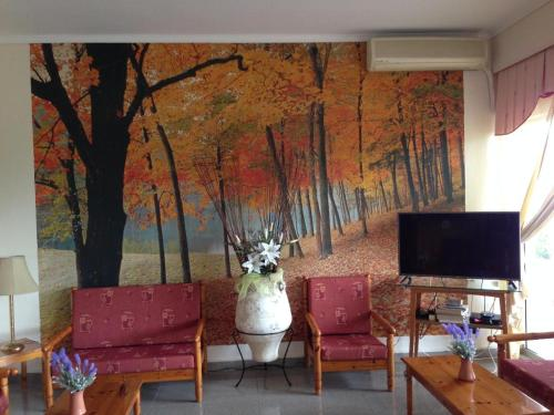 A television and/or entertainment center at Phaethon Hotel