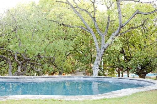 The swimming pool at or near Toshari Lodge