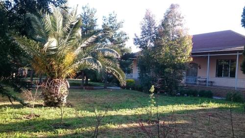 Um jardim em villa mardakan elite