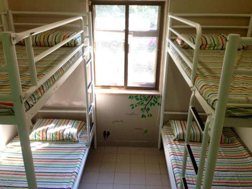 A bunk bed or bunk beds in a room at YHA Ngong Ping SG Davis Youth Hostel