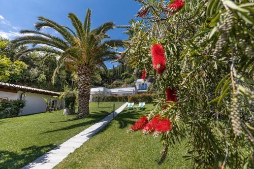 A garden outside Hotel Livia