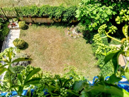 A garden outside Guest House Maria