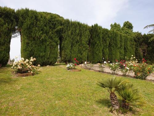 Giardino di Villa Bellaria