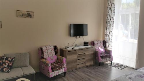 TV a/nebo společenská místnost v ubytování Apartment Marienbad Hlavni 131/50