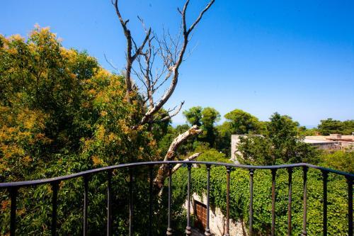 Vista sulla piscina di Il Carmine Dimora Storica o su una piscina nei dintorni