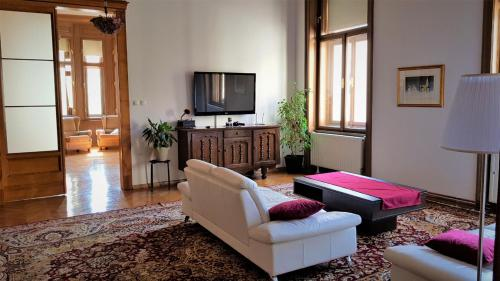 A television and/or entertainment centre at Luxury apartment in the heart of Varazdin