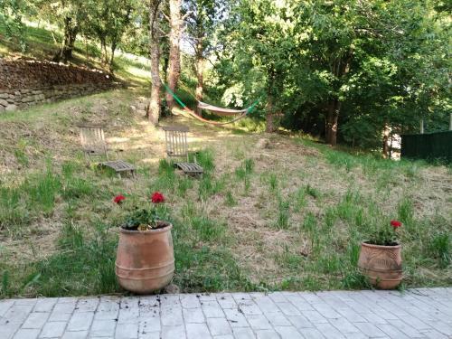 A garden outside Albergue Usandi Auto Check-in