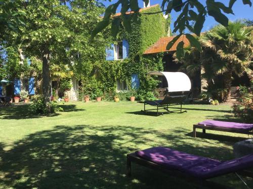 A garden outside Le Mas des Platanes