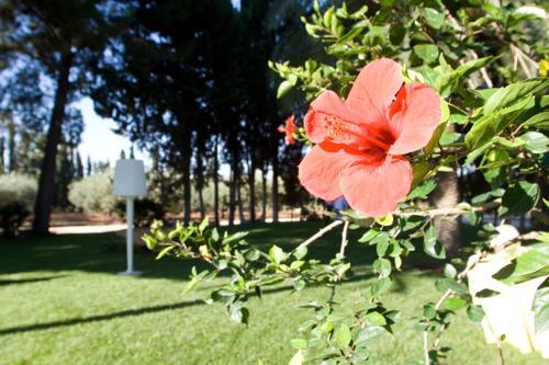 Giardino di Agriturismo Carbona