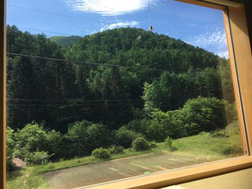 ホステルから撮影された、または一般的な山の景色