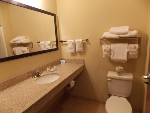 A bathroom at Cobblestone Hotel and Suites - Crookston