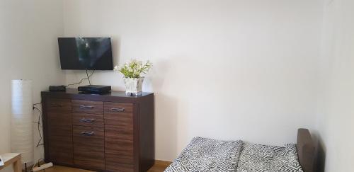 Telewizja i/lub zestaw kina domowego w obiekcie Apartament Aga1