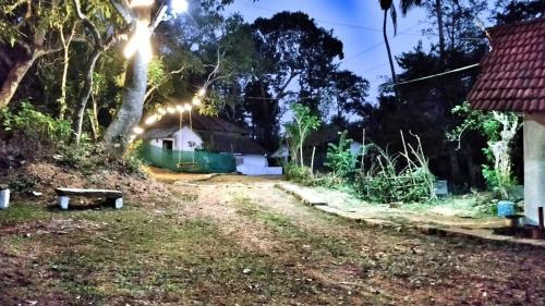 A garden outside Vamoose Naadmane Cottage