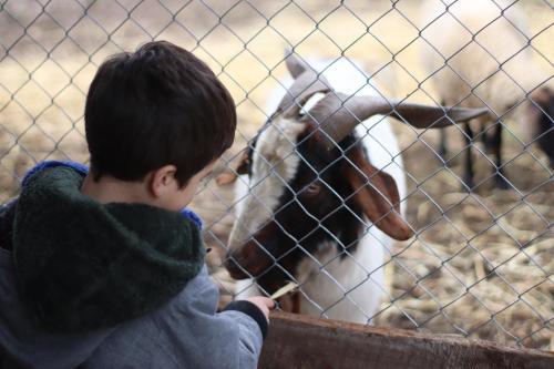 Niños alojados en Turismo Rural Lo Vilches