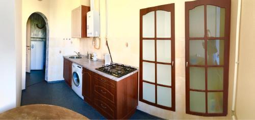 Кухня или мини-кухня в Apartments on Kamennoostrovskiy pr 9