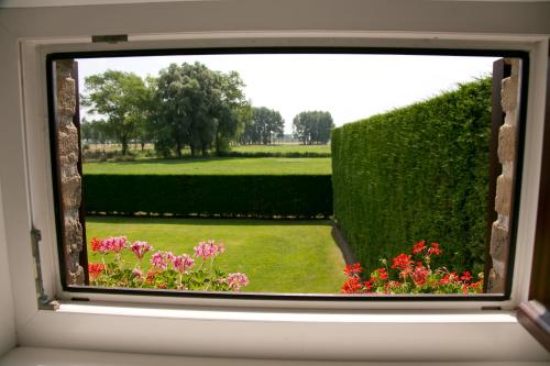 A view of the garden at Hoevedomein Polderrust or nearby
