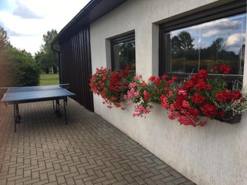 Stalo tenisas apgyvendinimo įstaigoje Sauna House in North of Lithuania arba netoliese