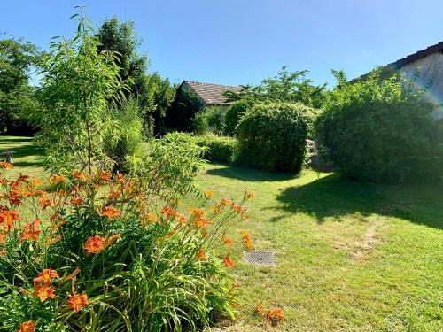 A garden outside Chez Madame Titus