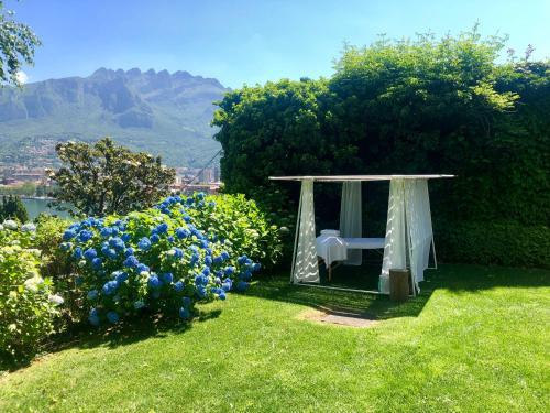 A garden outside Casa Sull'Albero