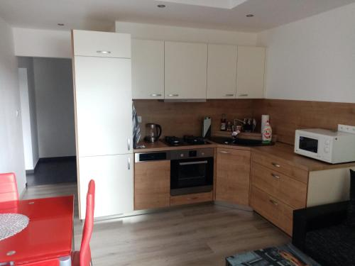 Kuchyň nebo kuchyňský kout v ubytování apartmán Aneta