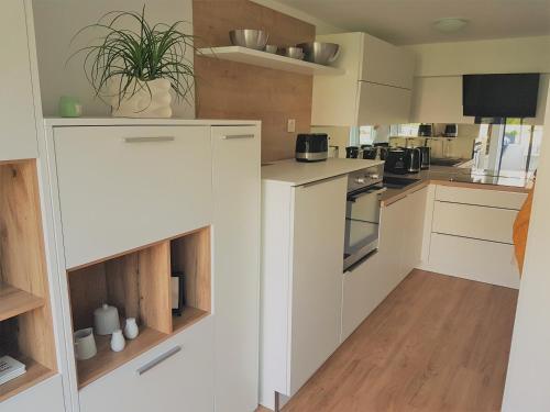 Kuhinja oz. manjša kuhinja v nastanitvi Apartma ALMA