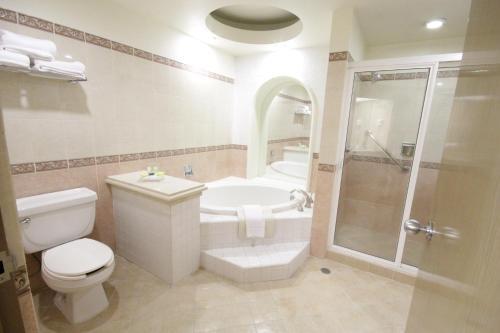 Un baño de Holiday Inn Leon-Convention Center
