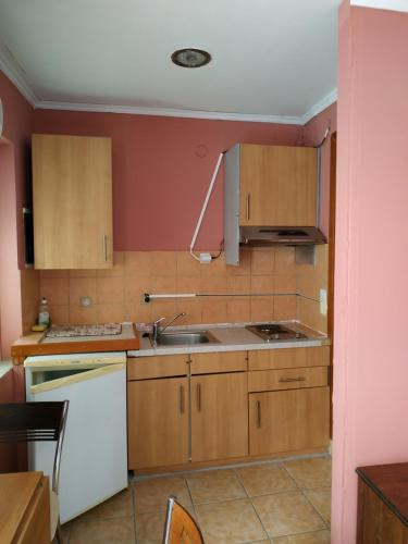 A kitchen or kitchenette at Dioni Studios & Apartments