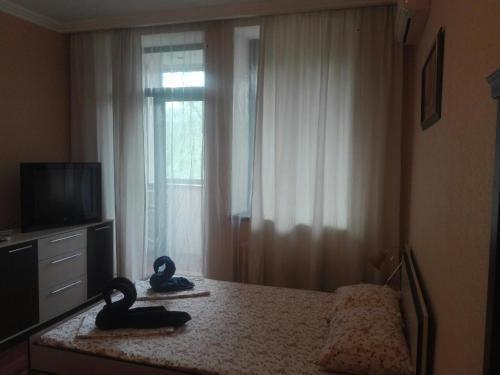 Телевизор и/или развлекательный центр в Apartment Lux Center Ukraina moll, near cafe Bosfor